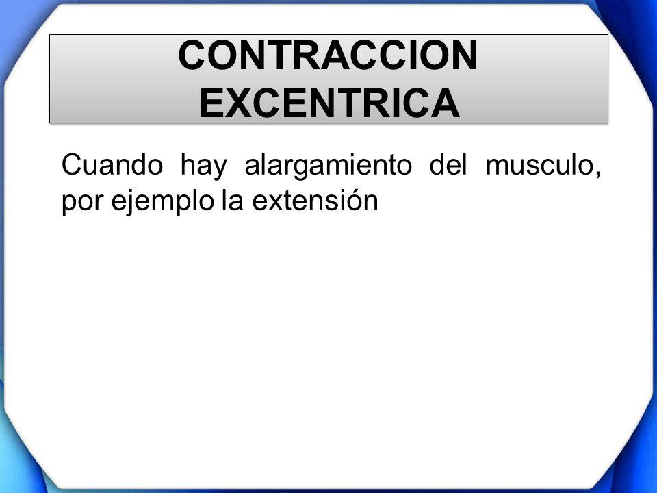 CONTRACCION EXCENTRICA