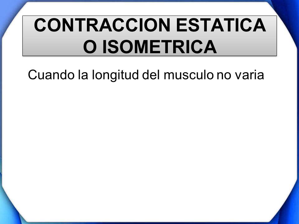 CONTRACCION ESTATICA O ISOMETRICA