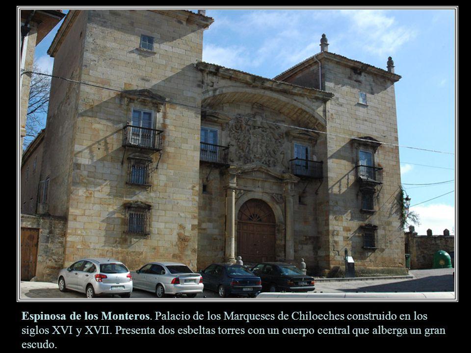 Espinosa de los Monteros