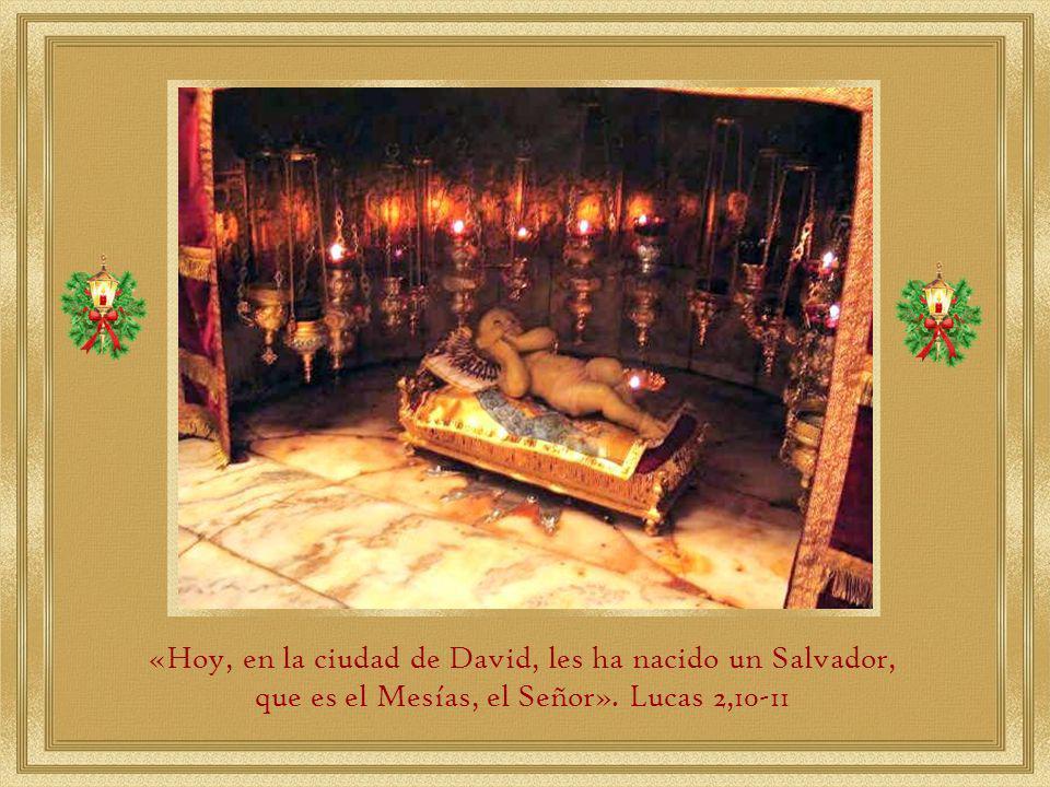 «Hoy, en la ciudad de David, les ha nacido un Salvador,