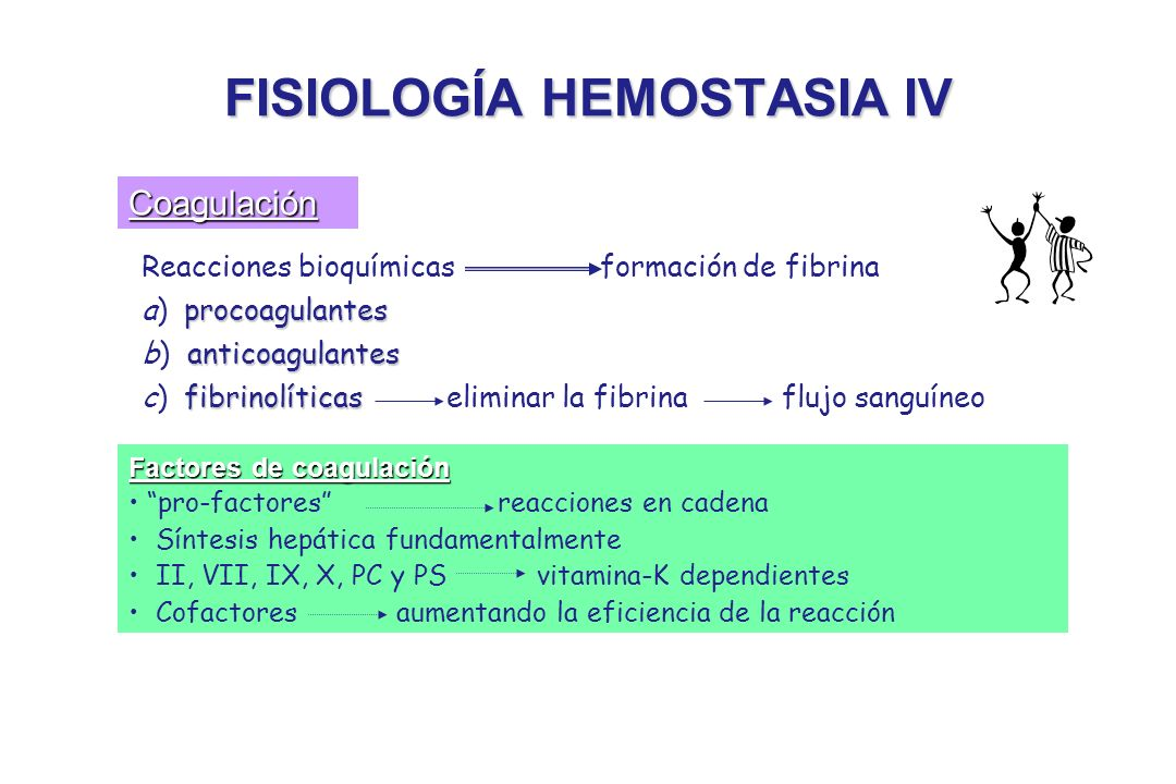 FISIOLOGÍA HEMOSTASIA IV