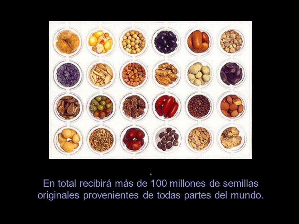 . En total recibirá más de 100 millones de semillas originales provenientes de todas partes del mundo.