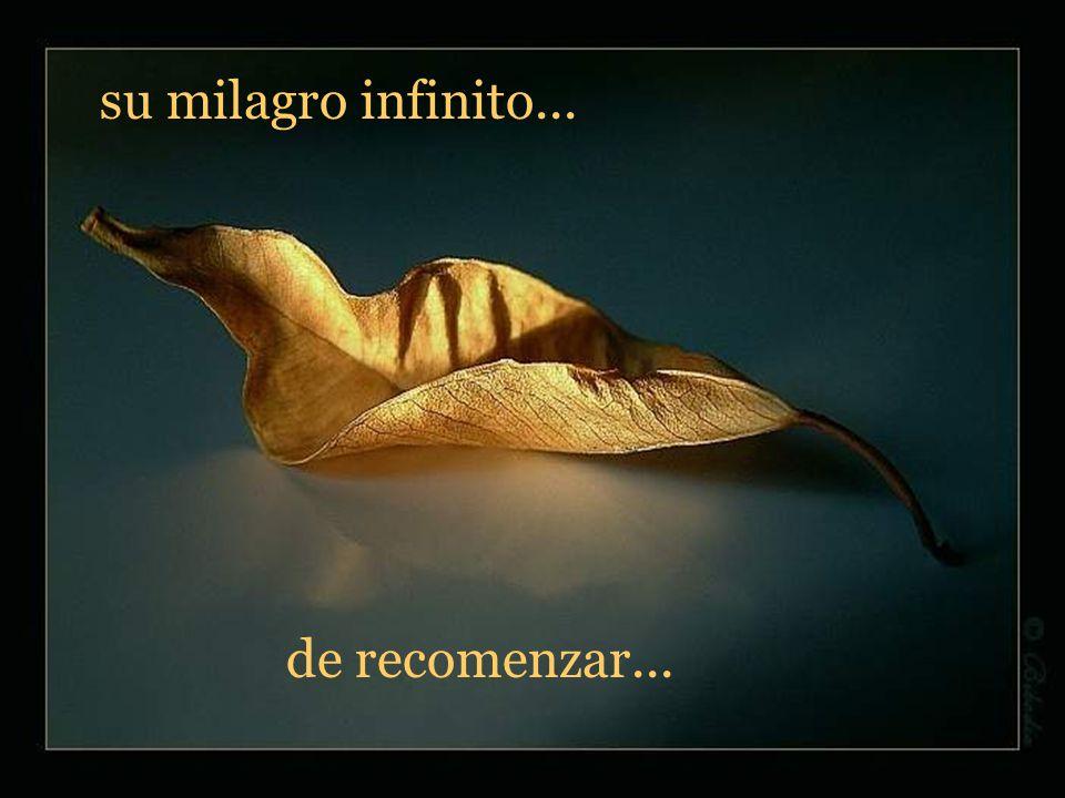 su milagro infinito... de recomenzar...