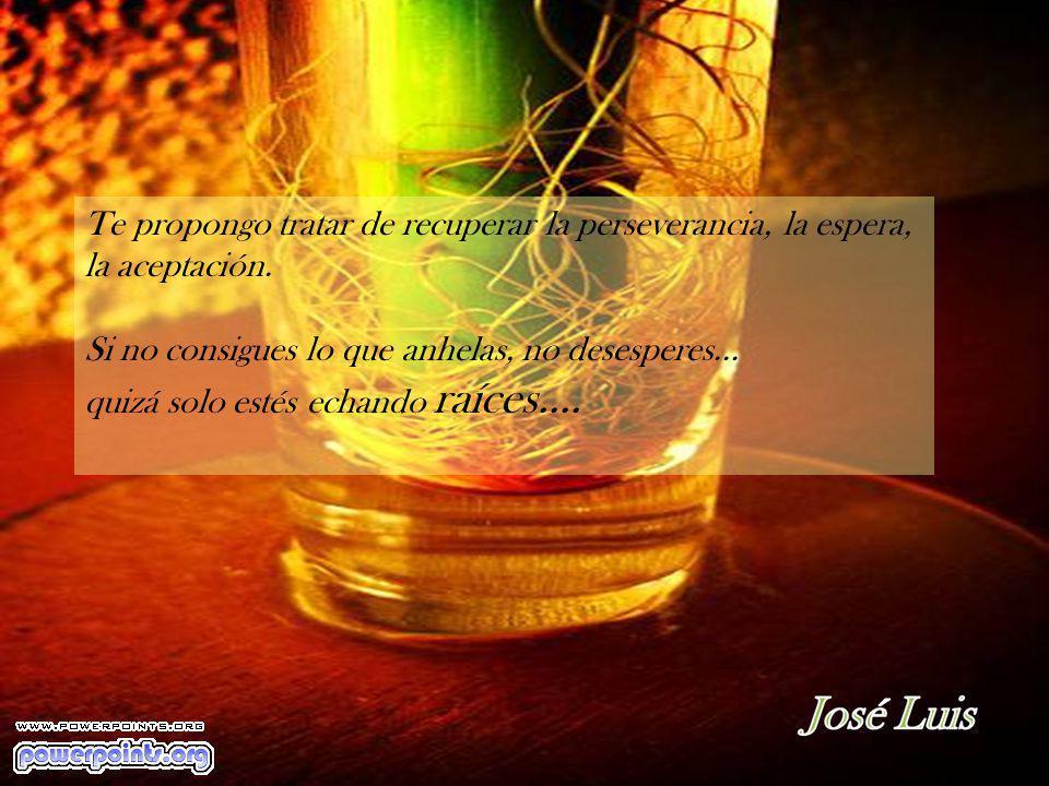 Te propongo tratar de recuperar la perseverancia, la espera, la aceptación.