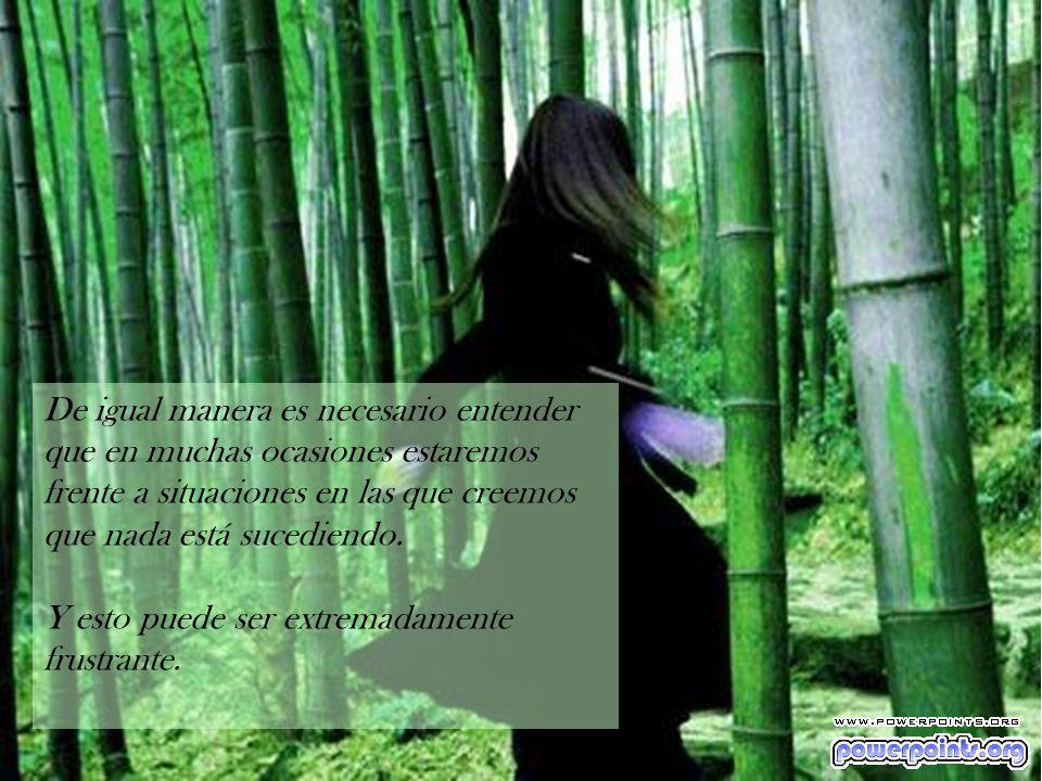 De igual manera es necesario entender que en muchas ocasiones estaremos frente a situaciones en las que creemos que nada está sucediendo.