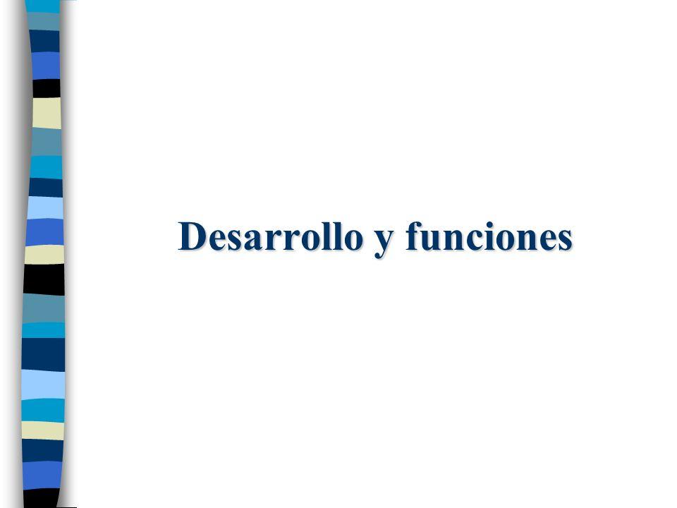 Desarrollo y funciones