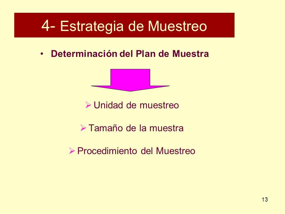 4- Estrategia de Muestreo