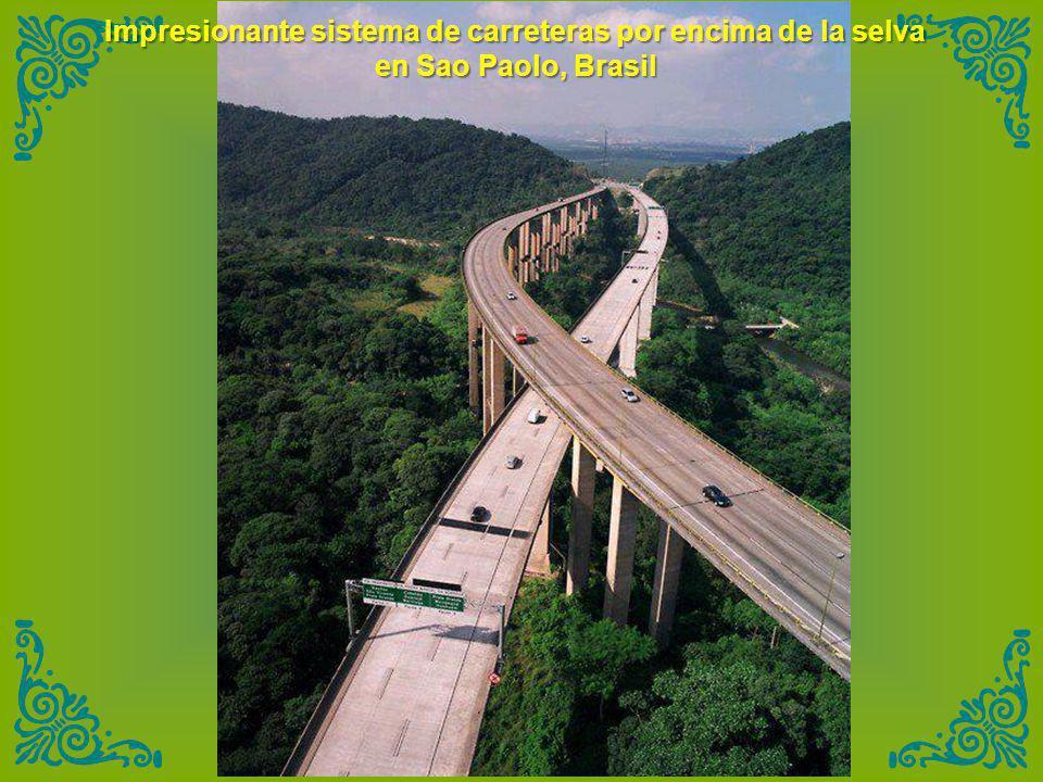 Impresionante sistema de carreteras por encima de la selva en Sao Paolo, Brasil