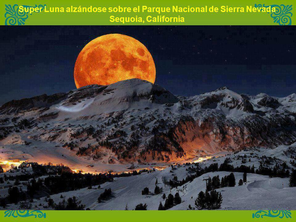 Super Luna alzándose sobre el Parque Nacional de Sierra Nevada Sequoia, California
