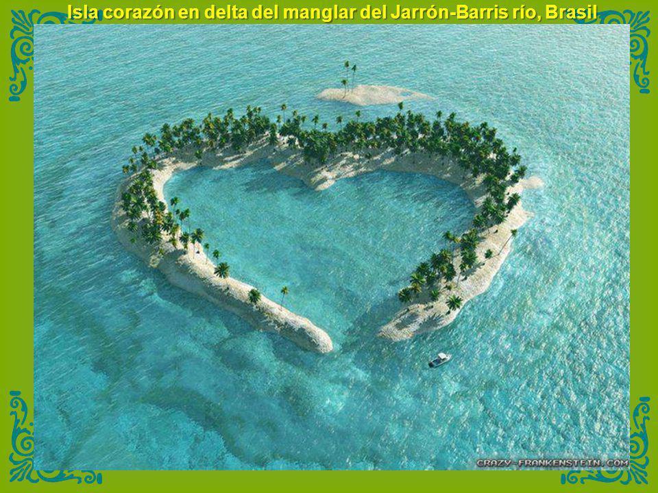 Isla corazón en delta del manglar del Jarrón-Barris río, Brasil