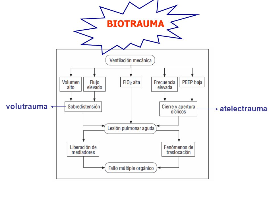 BIOTRAUMA volutrauma atelectrauma
