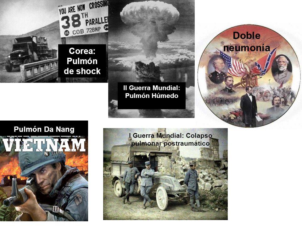 Doble neumonía Pulmón Da Nang Corea: Pulmón de shock Pulmón Da Nang
