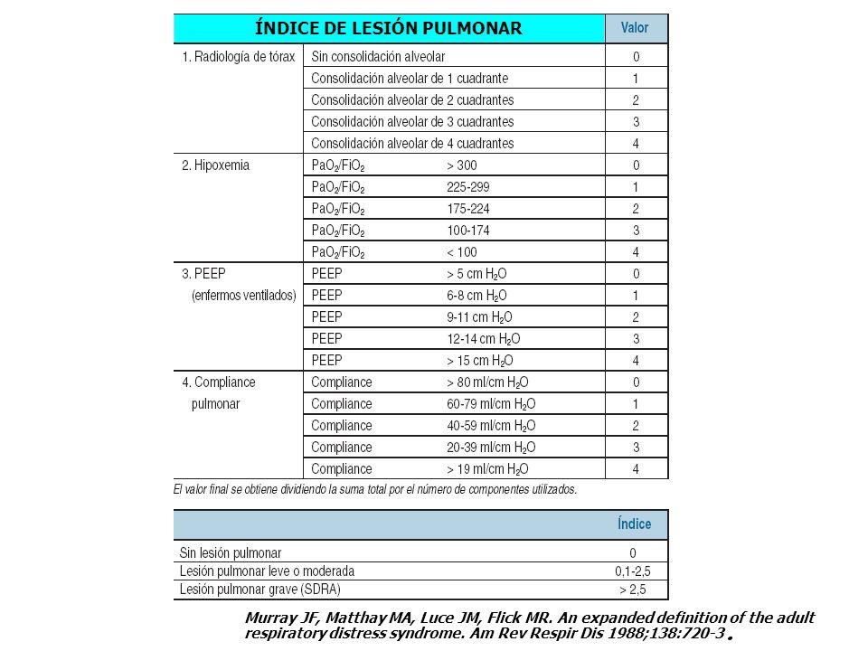 ÍNDICE DE LESIÓN PULMONAR