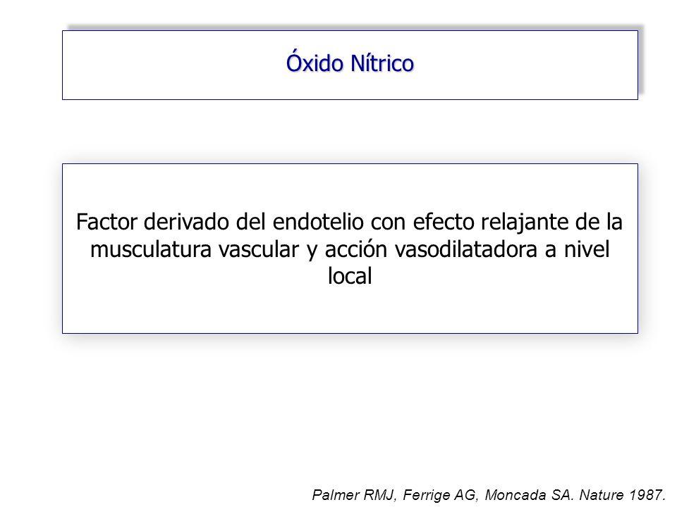 Óxido Nítrico Factor derivado del endotelio con efecto relajante de la musculatura vascular y acción vasodilatadora a nivel local.