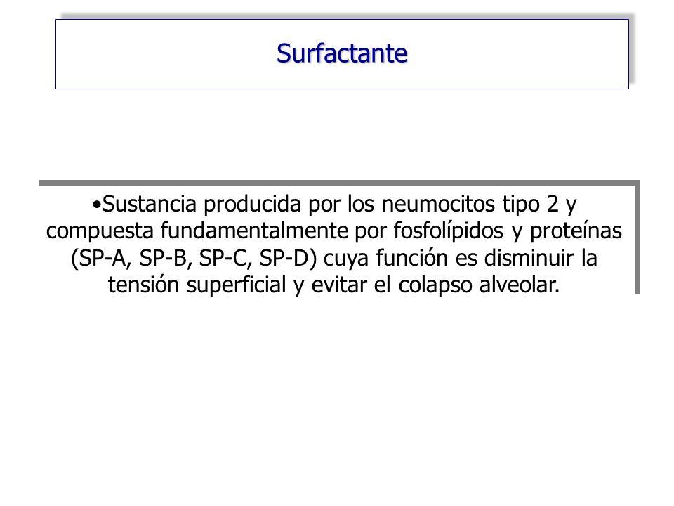 Surfactante