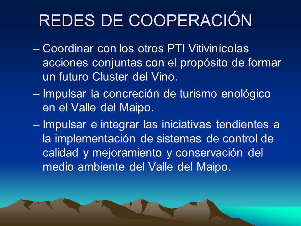 REDES DE COOPERACIÓN Coordinar con los otros PTI Vitivinícolas acciones conjuntas con el propósito de formar un futuro Cluster del Vino.
