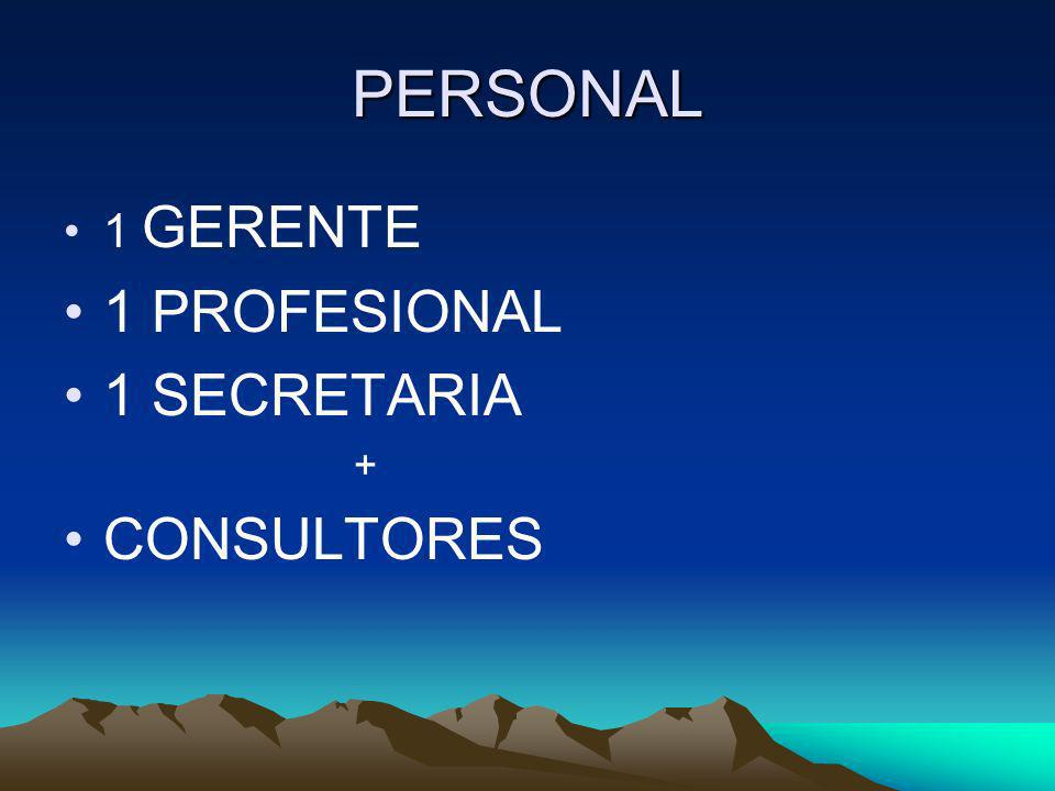 PERSONAL 1 GERENTE 1 PROFESIONAL 1 SECRETARIA + CONSULTORES