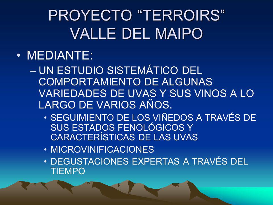 PROYECTO TERROIRS VALLE DEL MAIPO