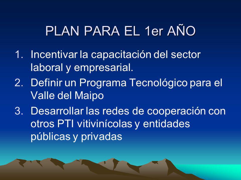 PLAN PARA EL 1er AÑO Incentivar la capacitación del sector laboral y empresarial. Definir un Programa Tecnológico para el Valle del Maipo.