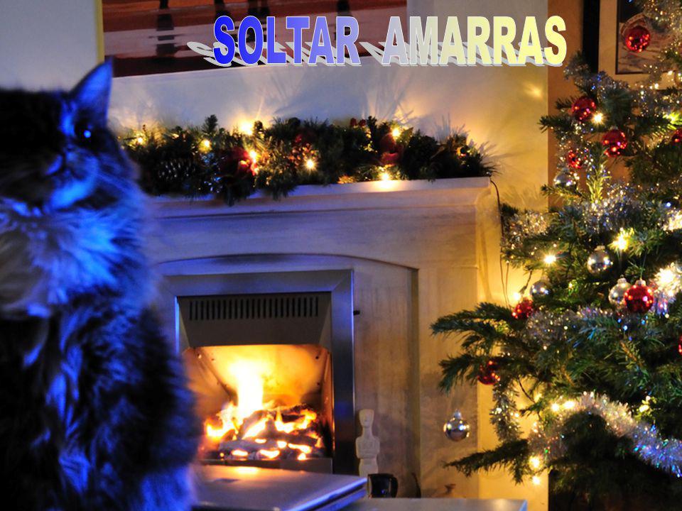 SOLTAR AMARRAS 2
