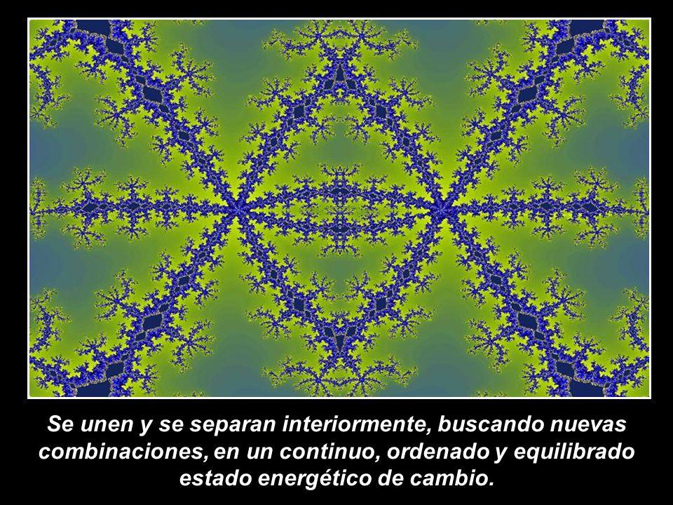 Se unen y se separan interiormente, buscando nuevas combinaciones, en un continuo, ordenado y equilibrado estado energético de cambio.