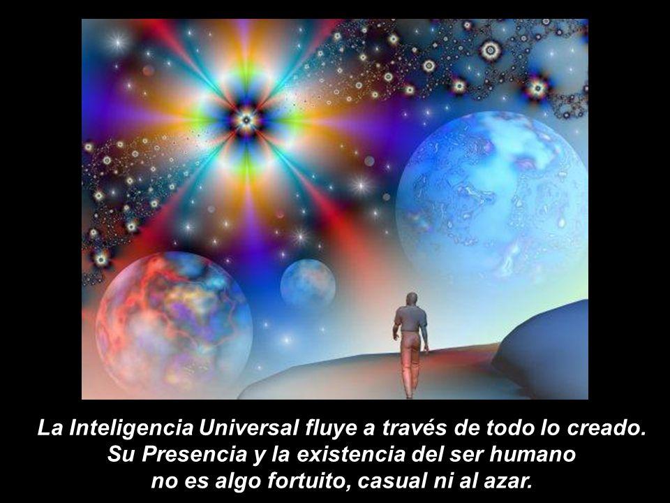 La Inteligencia Universal fluye a través de todo lo creado.