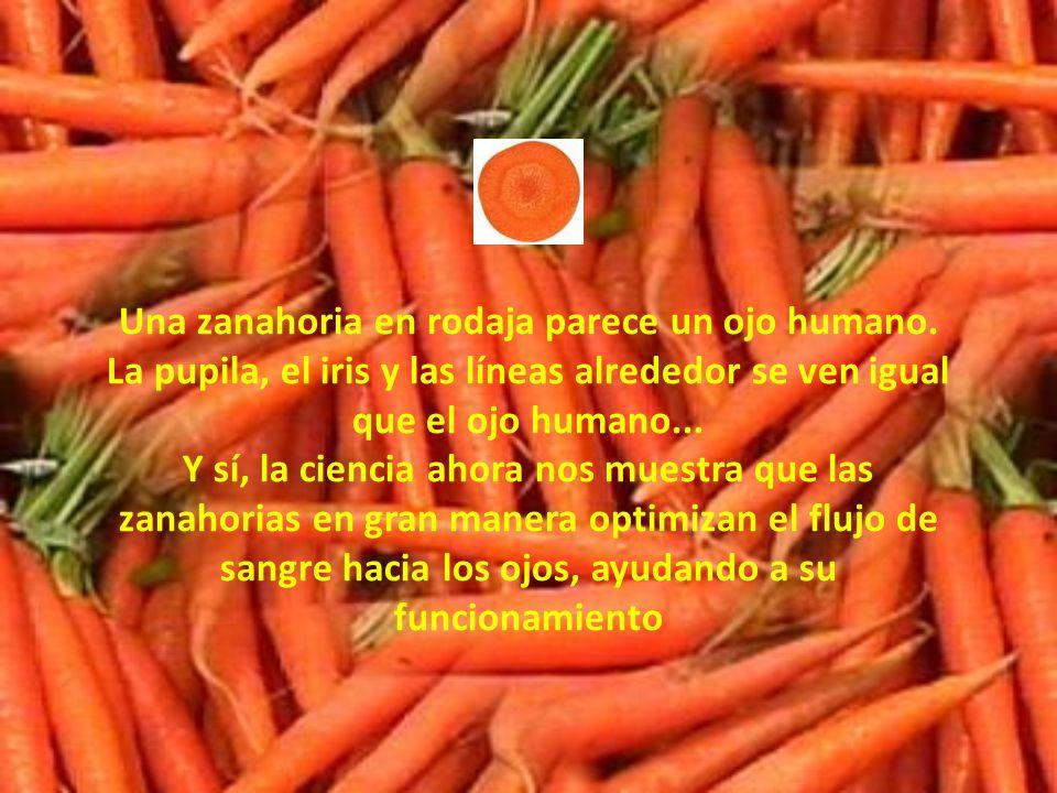 Una zanahoria en rodaja parece un ojo humano.