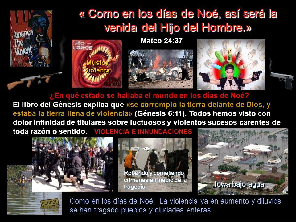 « Como en los días de Noé, así será la venida del Hijo del Hombre.»
