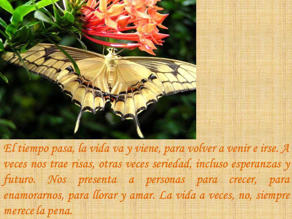 El tiempo pasa, la vida va y viene, para volver a venir e irse