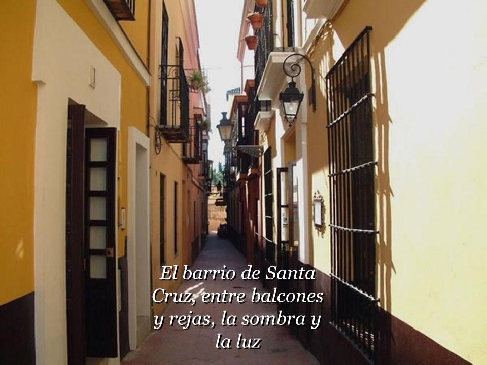 El barrio de Santa Cruz, entre balcones y rejas, la sombra y la luz