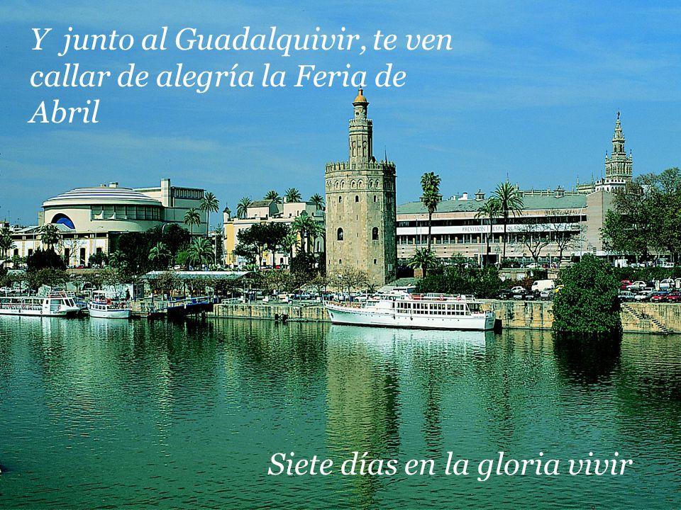 Y junto al Guadalquivir, te ven callar de alegría la Feria de Abril