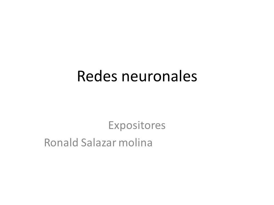 Expositores Ronald Salazar molina