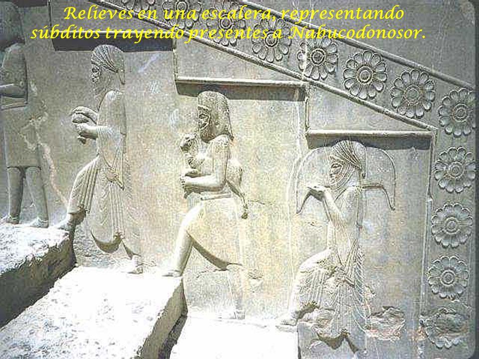 Relieves en una escalera, representando súbditos trayendo presentes a Nabucodonosor.