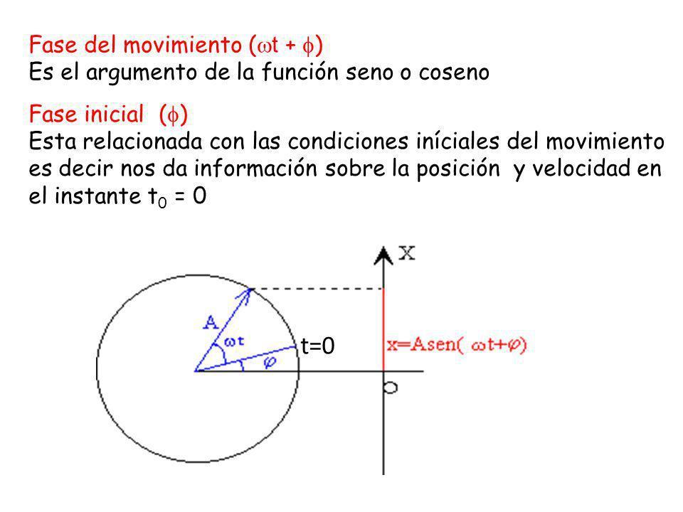 t=0 Fase del movimiento (t + )