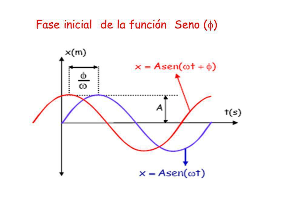 Fase inicial de la función Seno ()