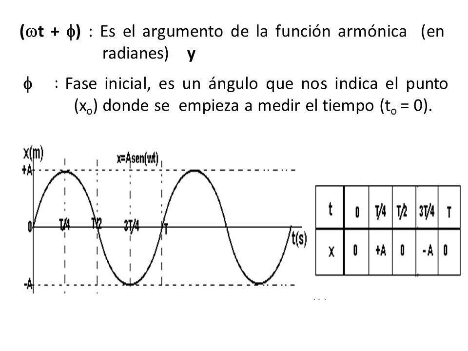(t + ) : Es el argumento de la función armónica (en radianes) y