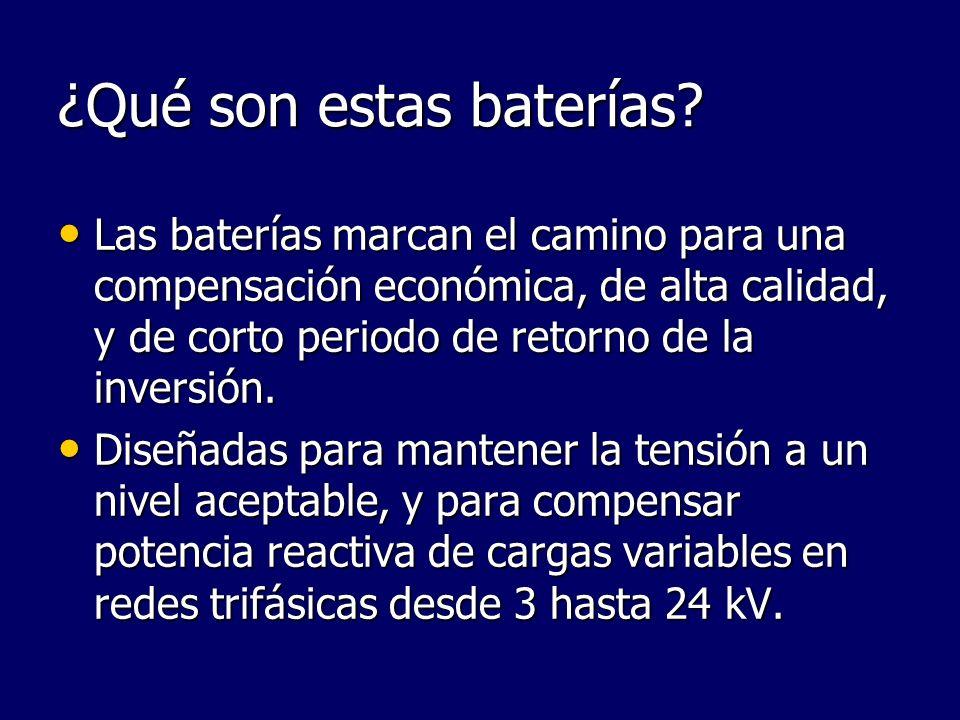¿Qué son estas baterías