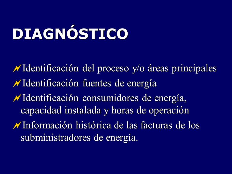 DIAGNÓSTICO Identificación del proceso y/o áreas principales
