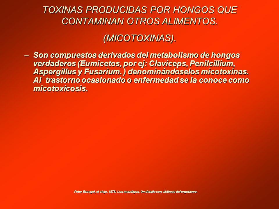 TOXINAS PRODUCIDAS POR HONGOS QUE CONTAMINAN OTROS ALIMENTOS