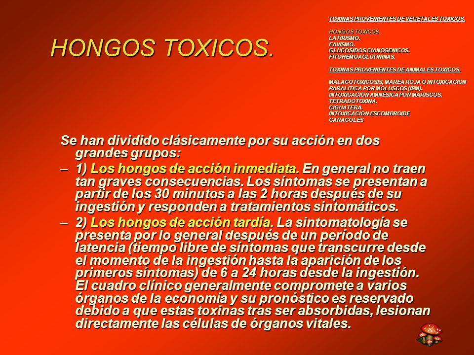 TOXINAS PROVENIENTES DE VEGETALES TOXICOS.