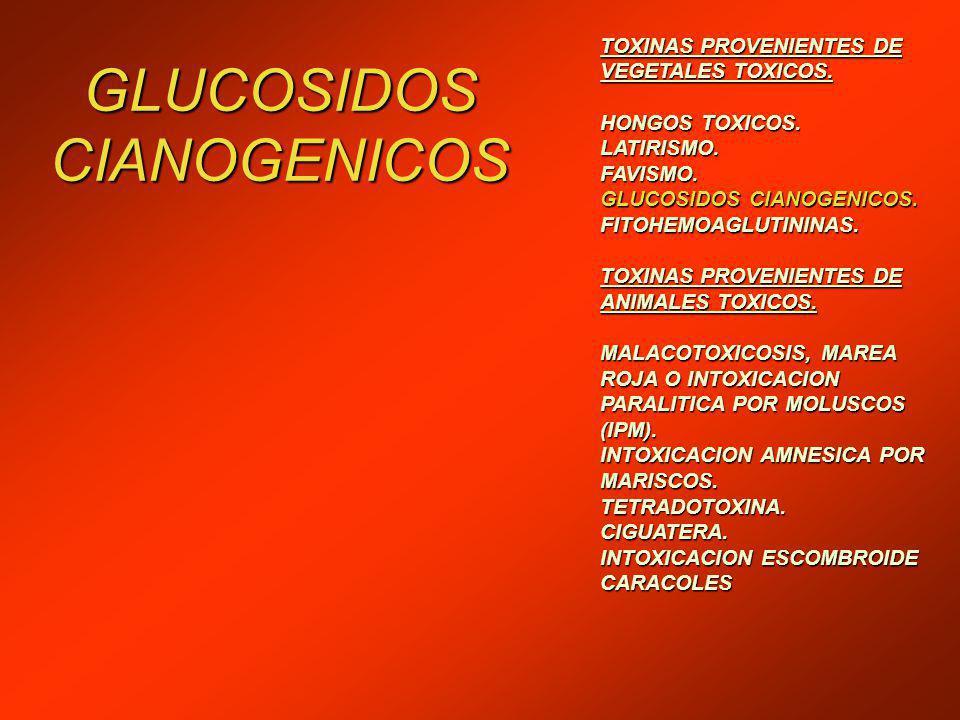 GLUCOSIDOS CIANOGENICOS