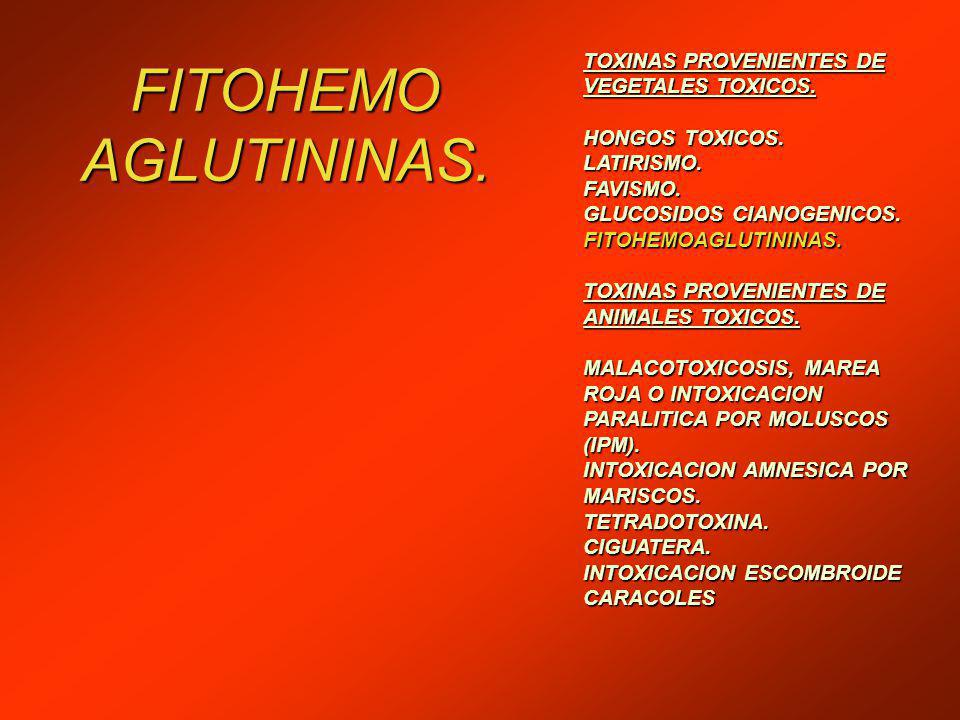 FITOHEMO AGLUTININAS. TOXINAS PROVENIENTES DE VEGETALES TOXICOS.