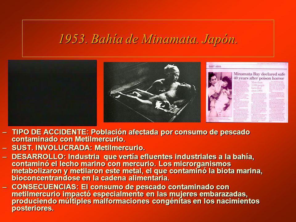 1953. Bahía de Minamata. Japón.