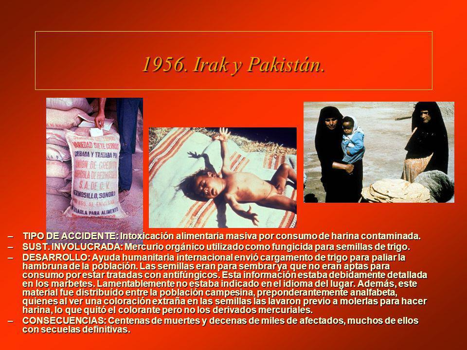 1956. Irak y Pakistán. TIPO DE ACCIDENTE: Intoxicación alimentaria masiva por consumo de harina contaminada.