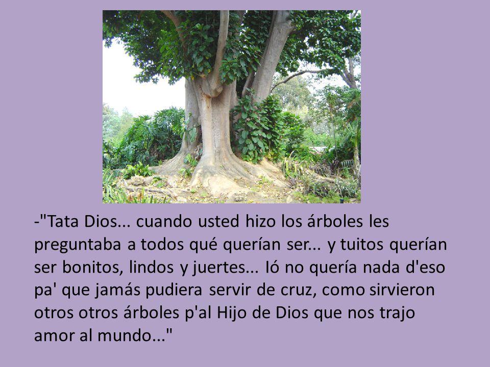 - Tata Dios... cuando usted hizo los árboles les preguntaba a todos qué querían ser...