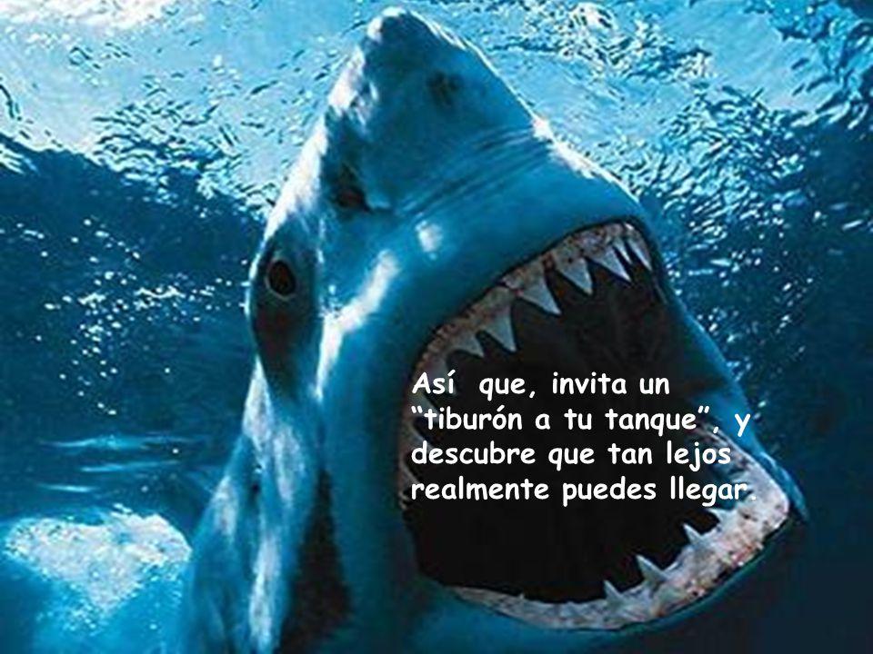 Así que, invita un tiburón a tu tanque , y descubre que tan lejos realmente puedes llegar.