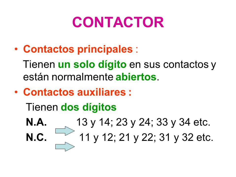 CONTACTOR Contactos principales :