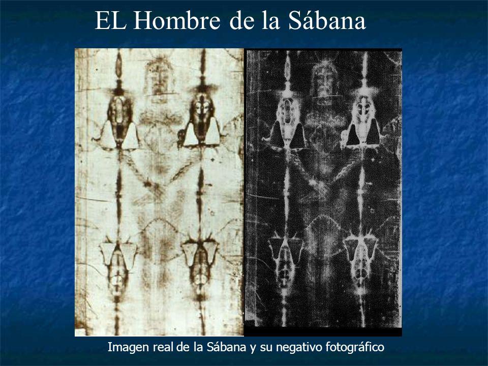 Imagen real de la Sábana y su negativo fotográfico