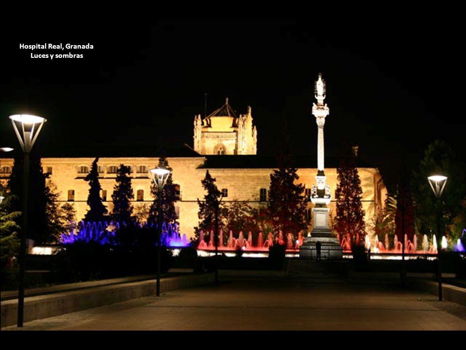 Hospital Real, Granada Luces y sombras