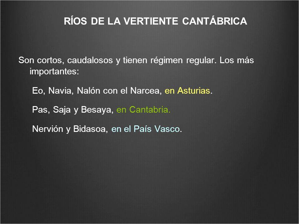 RÍOS DE LA VERTIENTE CANTÁBRICA